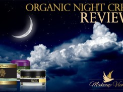 Best Organic Night Cream